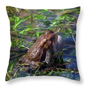 Rib-it Throw Pillow