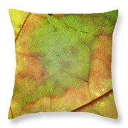 Ribbing Throw Pillow