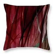 Ribbon And Lace Throw Pillow