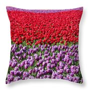 Ribbons Of Color Throw Pillow