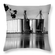 Rice Country Throw Pillow