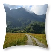 Rice Field  Throw Pillow