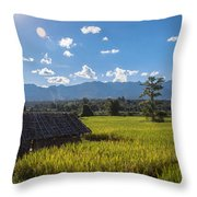 Rice Fields Of Thailand Throw Pillow
