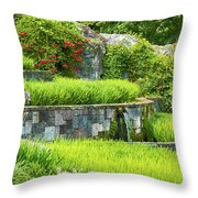 Rice Garden Throw Pillow