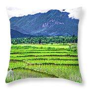 Rice Paddies And Mountains Throw Pillow
