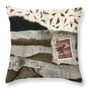 Rice Paddies Collage Throw Pillow