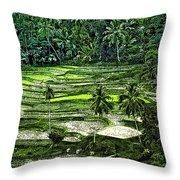 Rice Paddies Throw Pillow