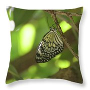 Rice Paper Butterfly Clinging To A Tree Branch Throw Pillow