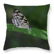 Rice Paper Butterfly On A Long Daylily Leaf Throw Pillow