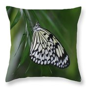 Rice Paper Butterfly Sitting On Green Foliage Throw Pillow