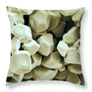 Rice Starch Granules Throw Pillow
