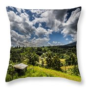 Rice Terrace Throw Pillow
