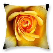 Rich And Dreamy Yellow Rose   Throw Pillow