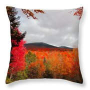 Rich Fall New Hampshire Colors Throw Pillow