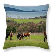 Rich Land Throw Pillow
