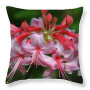 Rich Pink Blossoms Throw Pillow