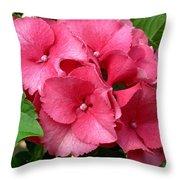 Rich Pink Throw Pillow