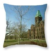Richardon Olmsted Complex, Buffalo Throw Pillow