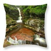 Ricketts Glen Adams Falls Throw Pillow