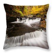 Ricketts Glen Autumn Flow Throw Pillow