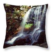 Ricketts Glen Falls 029 Throw Pillow