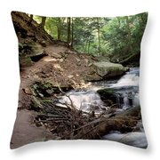 Ricketts Glen Falls 030 Throw Pillow