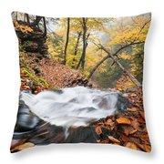 Ricketts Glen State Park Ganoga Falls Allegheny Mountains Pennsylvania Throw Pillow