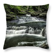 Ricketts Glen_061414_0097 Throw Pillow