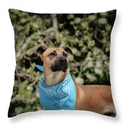 Rico 2 Throw Pillow
