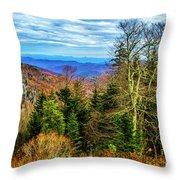 Ridge Junction Throw Pillow