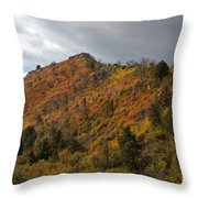 Ridge Line Throw Pillow