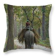 Riding An Elephant Throw Pillow
