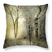 Rimy Forest Windy Daybreak By Laszlo Mednyanszky 1896 Throw Pillow