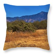 Rincon Peak, Tucson, Arizona Throw Pillow
