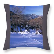 Rincon Trail - Sequoia Throw Pillow