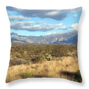 Rincon Valley Winter Throw Pillow
