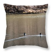 Ring-necked Duck Formation Throw Pillow