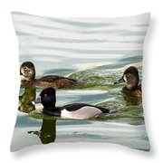 Ring-necked Trio Throw Pillow