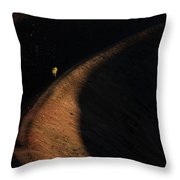 Ring Of Life Throw Pillow