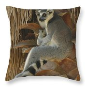 Ring Tail  Throw Pillow