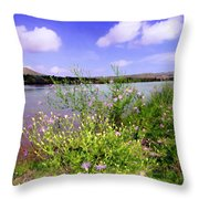 Rio Grande De Las Cruces Throw Pillow