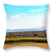 Rio Grande Flood Plain Throw Pillow