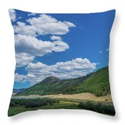 Rio Grande Headwaters #3 Throw Pillow