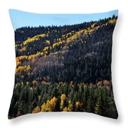 Rio Grande National Forest Throw Pillow