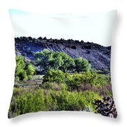 Rio Grande River Valley Throw Pillow