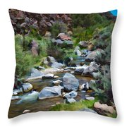 Rio Hondo Arroyo  Throw Pillow