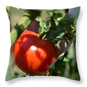Ripe For Picking Throw Pillow