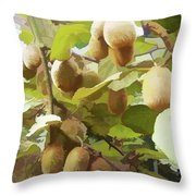 Ripe Kiwi Fruit On The Branch Throw Pillow