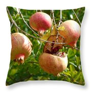 Ripe Pomegranates Throw Pillow