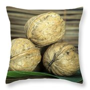 Ripe Walnuts Throw Pillow